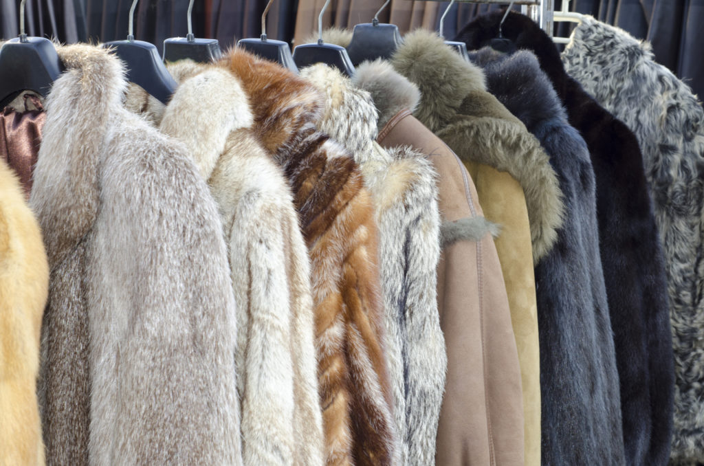 クローゼットに眠る毛皮を高く買取してもらうポイント!